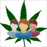 medical marijuana dispensary in California?