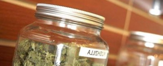 Cannabis event