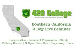 what is a collective for medical marijuana