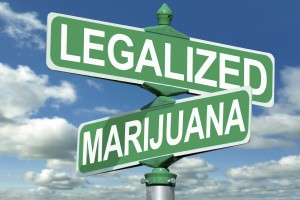 Marijuana law attorney1