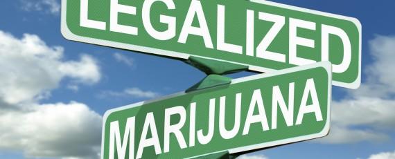 Marijuana law attorney