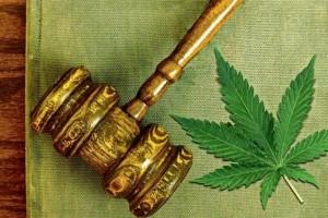Marijuana local ordinance