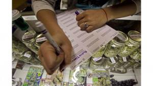 Marijuana business accounting firm