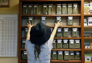 online-marijuana-education