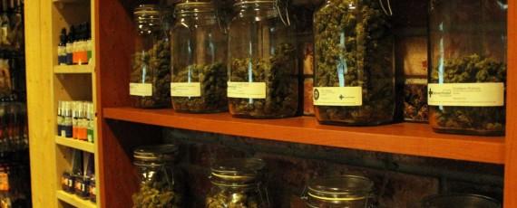 marijuana law suit
