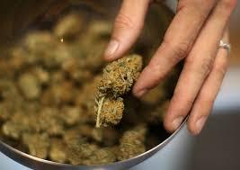 Medical marijuana seminar1