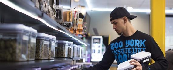 Workshops for marijuana business_4