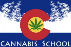 Cannabis school