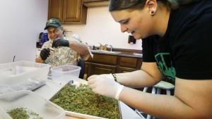 Online marijuana institute