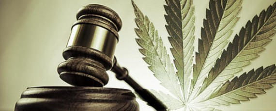 Dispensary law firm