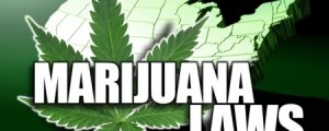 Marijuana business law group