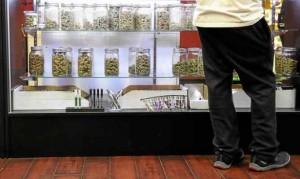 Marijuana business applications