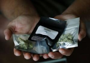 Marijuana delivery service applications3