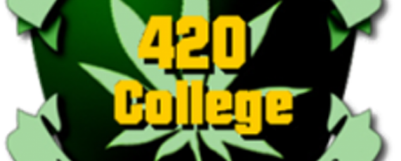 California 420 institute