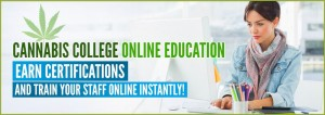 Online cannabis education1